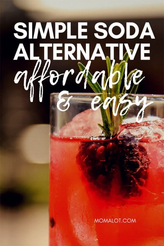 The Super Easy Soda Alternative to Satisfy You & Your Wallet